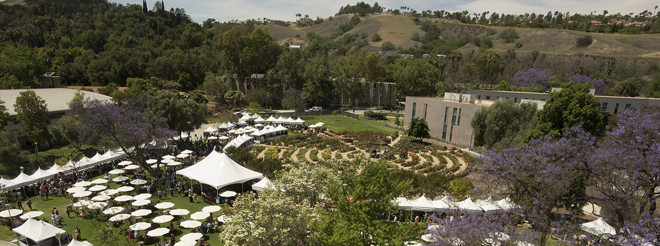 Tasting and Auction aerial view